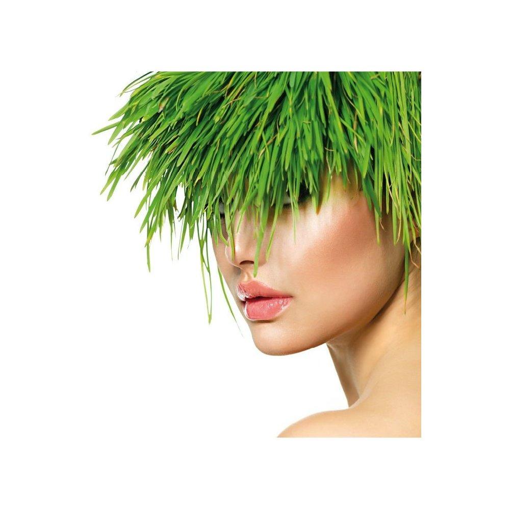 Vlasové hnojivo: Recenze